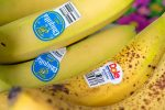 Learn to Identify the Bar Code on Your Produce Easily
