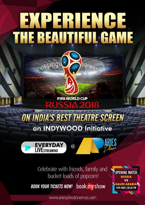 FIFA World Cup 2018_Aries Plex
