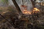 Death toll rises as dry conditions fuel deadly California fires