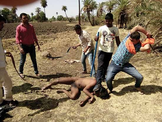 content_mg394-cow-lynching-of-muslim-animal-trader-Choti-Sadari-dist-Chittorgarh-Rajasthan-30-5-16