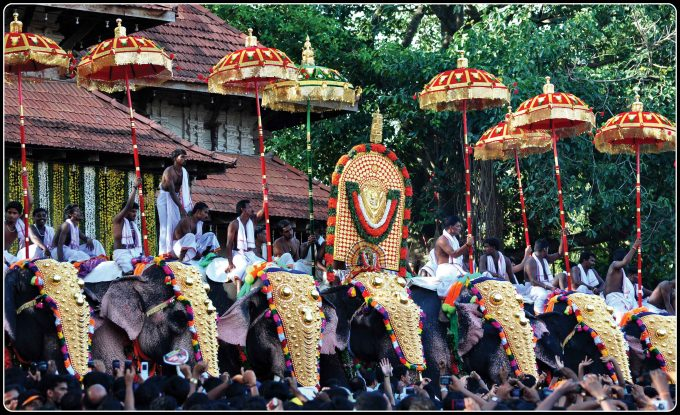 elephant processions for onam celebrations 2013
