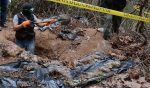 Mass Grave Uncovered in Veracruz, Mexico; 168 human remains found
