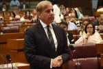 Shehbaz Sharif lauds PAF for retaliatory action against India