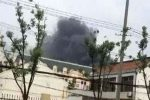 Seven killed in blast at electronics factory in east China