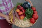 Plant-based diets tied to lower risk of type 2 diabetes