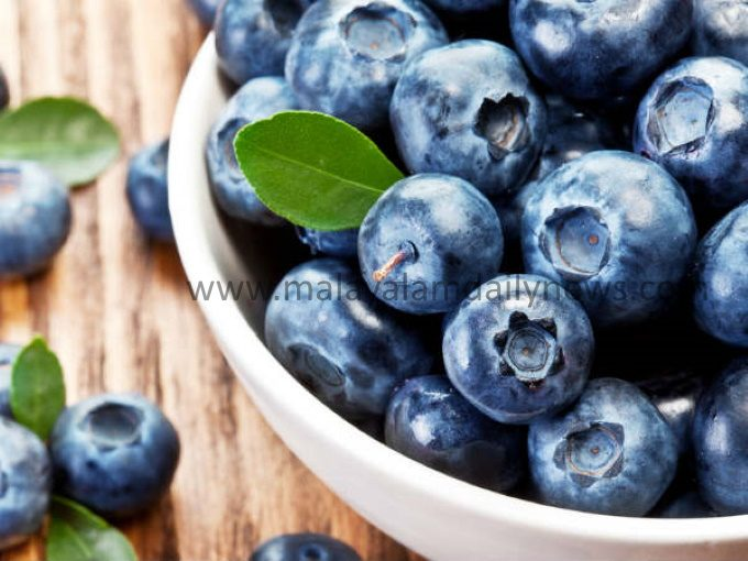 13-1497327090-2blueberries-12-1497250841-1574079488