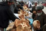 Over 10 million Afghans suffer acute food insecurity: UN report