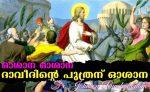 ഓശാന ഓശാന ദാവീദിന്റെ പുത്രന് ഓശാന (ഫാ. ജോണ്സണ് പുഞ്ചക്കോണം)