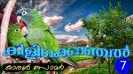 കിളിക്കൊഞ്ചല് (ബാലസാഹിത്യ നോവല് – 7)