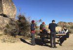 Joshua Tree National Park Closes Over Shutdown Problems