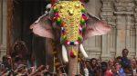 തെച്ചിക്കോട്ട് രാമചന്ദ്രന് മദപ്പാടില്ല, പാപ്പാന്മാരെ അനുസരിക്കുന്നു; സാക്ഷ്യപ്പെടുത്തി ഡോക്ടര്മാര്
