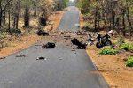 മഹാരാഷ്ട്രയില് മാവോയിസ്റ്റ് ആക്രമണത്തില് 15 സൈനികര് കൊല്ലപ്പെട്ടു