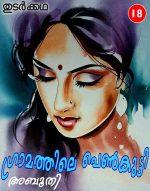 ഗ്രാമത്തിലെ പെണ്കുട്ടി (തുടര്ക്കഥ – 18): അബൂതി