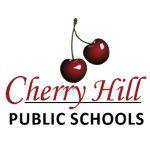Hindus seek Diwali holiday in New Jersey's Cherry Hill Public Schools, starting 2021