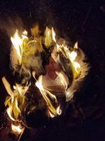 സവർണ സംവരണം: പുലാപ്പറ്റയിൽ ഫ്രറ്റേണിറ്റി മുഖ്യമന്ത്രിയുടെ കോലം കത്തിച്ചു